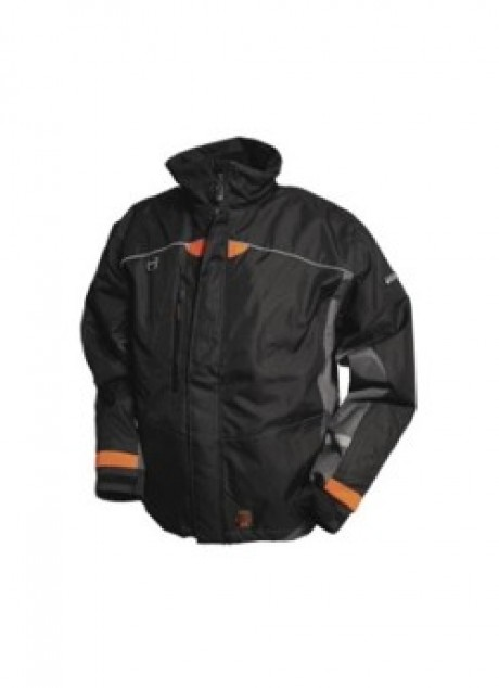 Winter Jacket   image