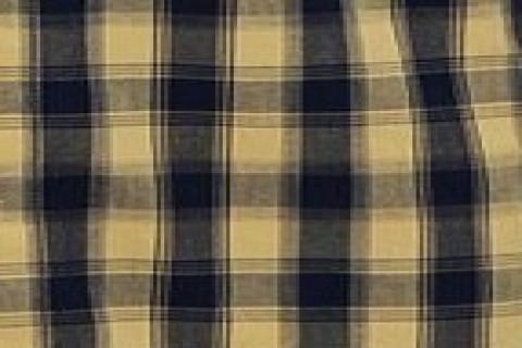 CAMEL/NAVY CHECK (46)