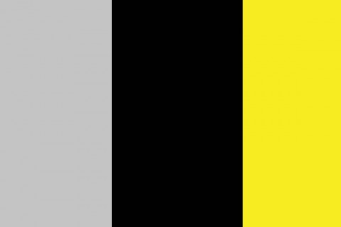 Grey/Black/Yellow (07)
