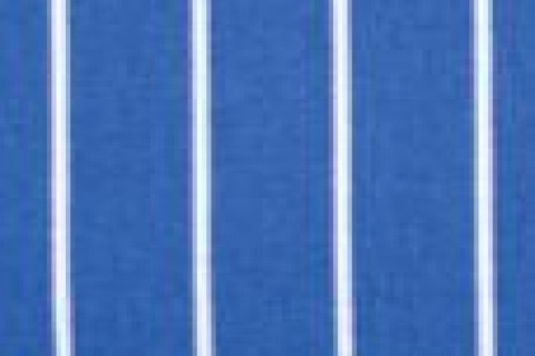 Blue butchers stripe (09)