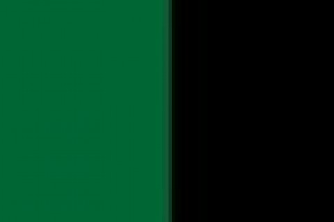 Darkgreen-black (17)